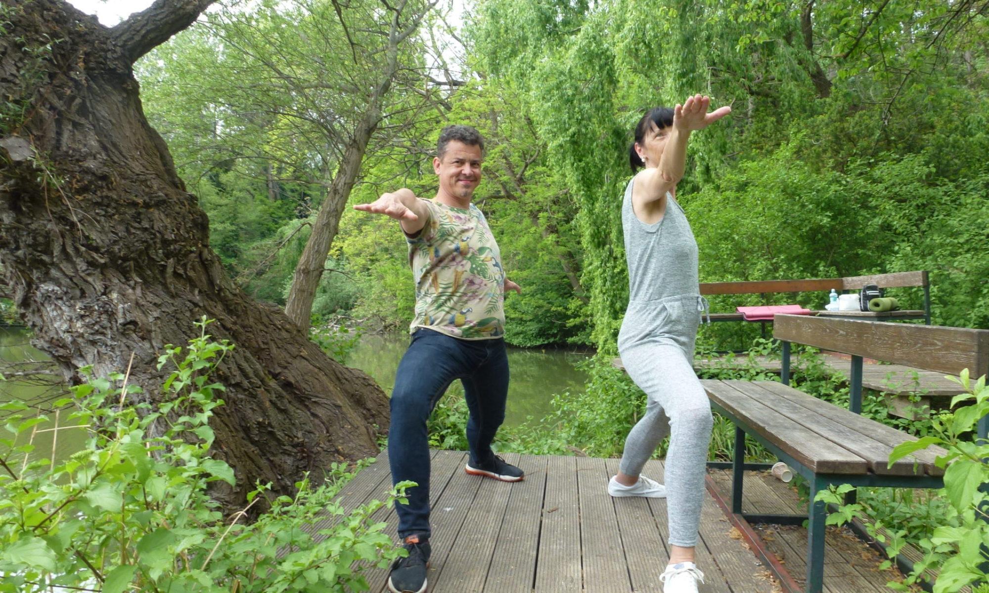 🧘 Gesundheits.Yoga 🧘 Hatha Yoga sanft 🧘 Yogakurse Einzelunterricht