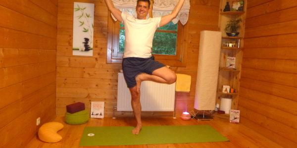 private-yoga-starnwoerth-baum