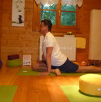 private-yoga-starnwoerth-halbe-taube