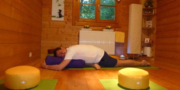 private-yoga-starnwoerth-krokodil-yinposition